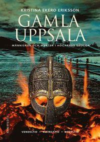 9789113080666_200x_gamla-uppsala-manniskor-och-makter-i-hogarnas-skugga